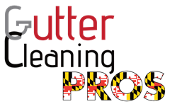 Gutter Cleaning Pros